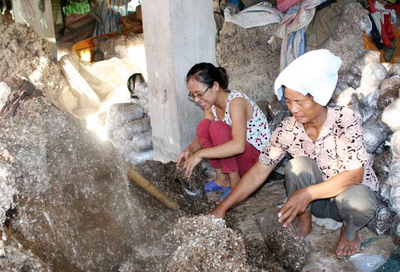 Nguyễn Thị Linh đang làm việc tại phân xưởng nấm