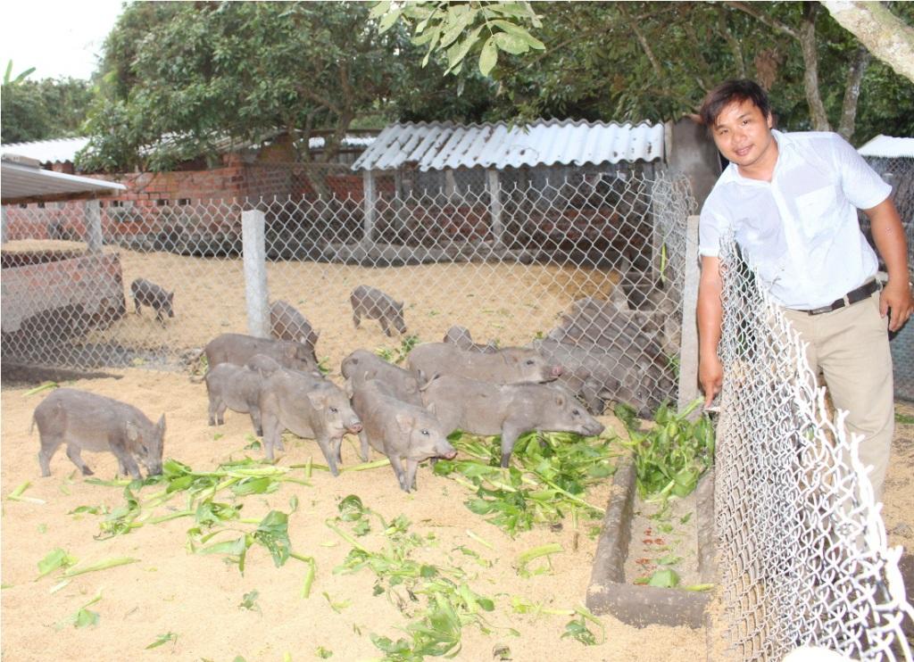 Trang trại heo rừng của chàng cử nhân Đoàn Phan Dinh