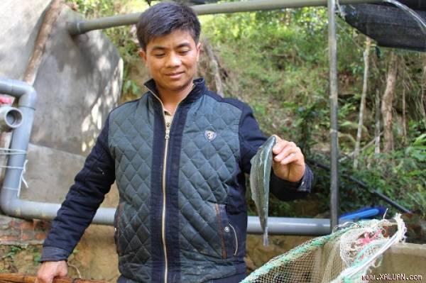 Anh Trình mạnh dạn đầu tư cá hồi dù chi phí đắt đỏ
