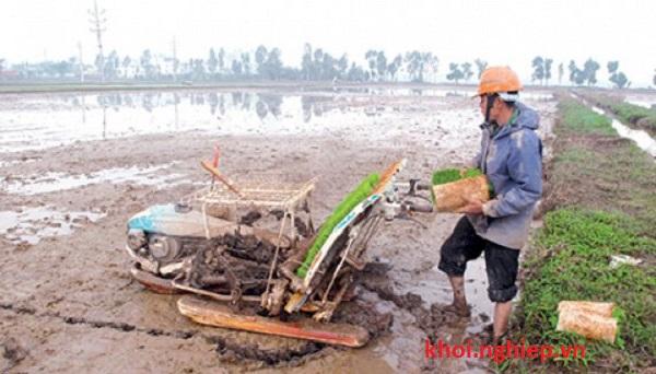 Anh Phạm Ngọc Hưng