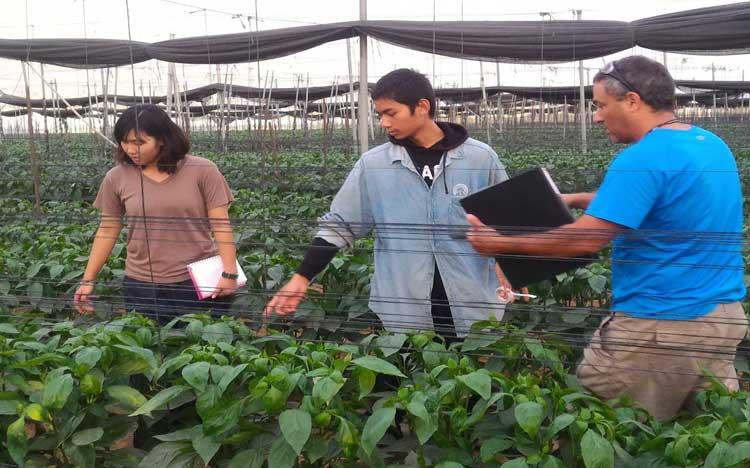 Nông nghiệp công nghệ cao: Học từ Israel