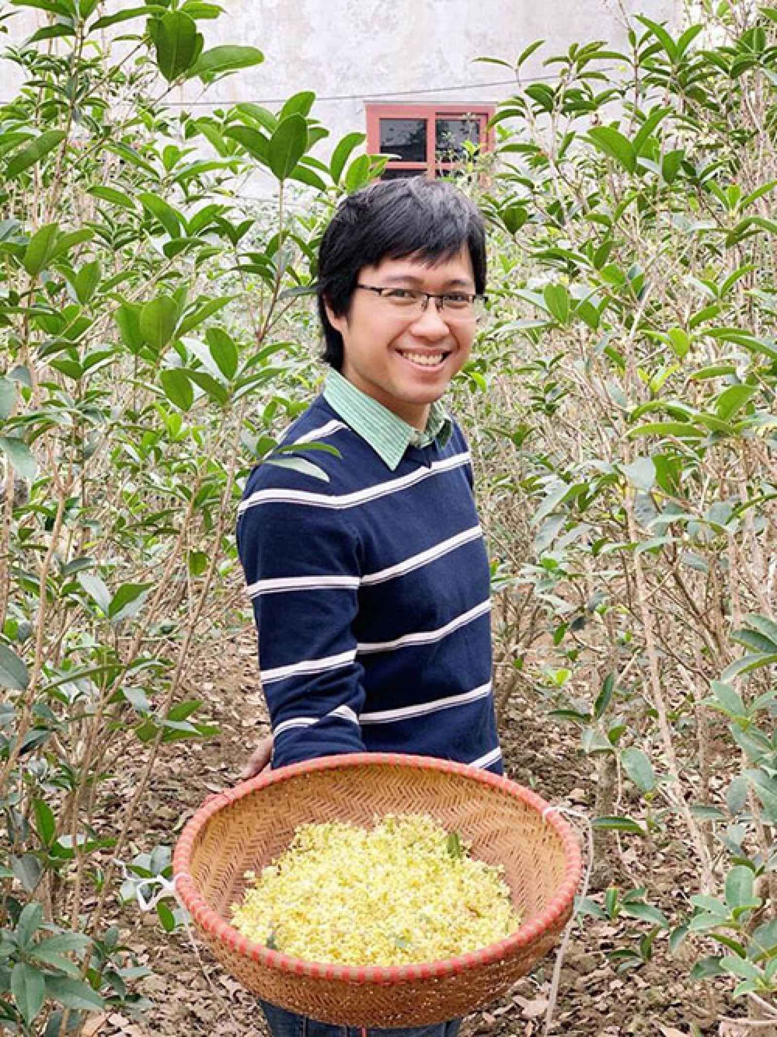 Nguyễn Tuấn Linh hái hoa mộc để ướp trà. Ảnh: NVCC.