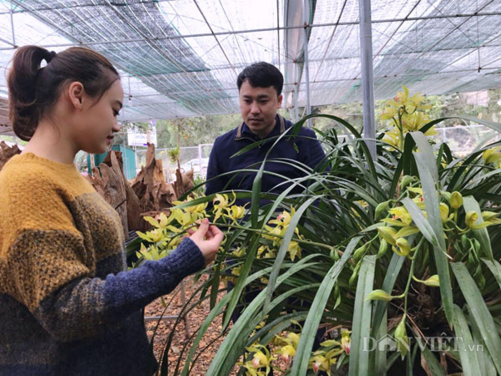 Chị Huệ Anh (vợ anh Thắng) giới thiệu, tư vấn về các loại hoa cho khách hàng đến xem tại vườn.