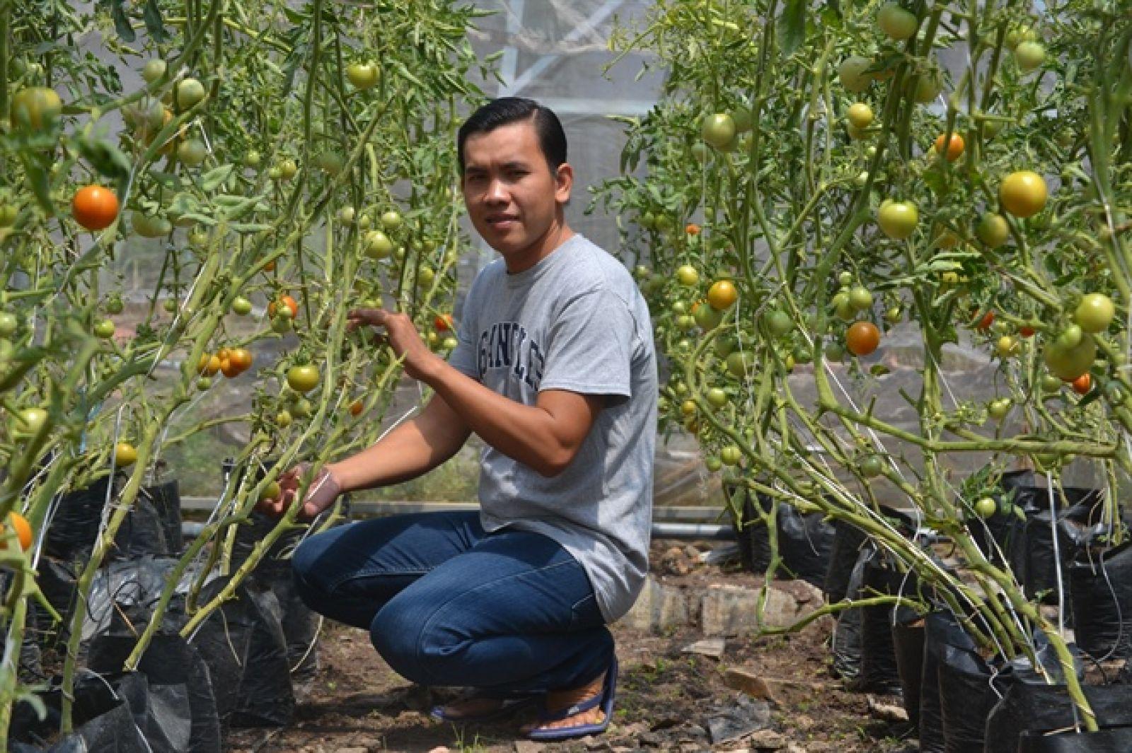 Anh Huỳnh Phú Lộc khởi nghiệp thành công với mô hình nông nghiệp công nghệ cao