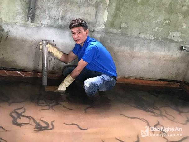 Nuôi lươn không bùn cần đảm bảo nguồn nước sạch. Ảnh: Minh Thái