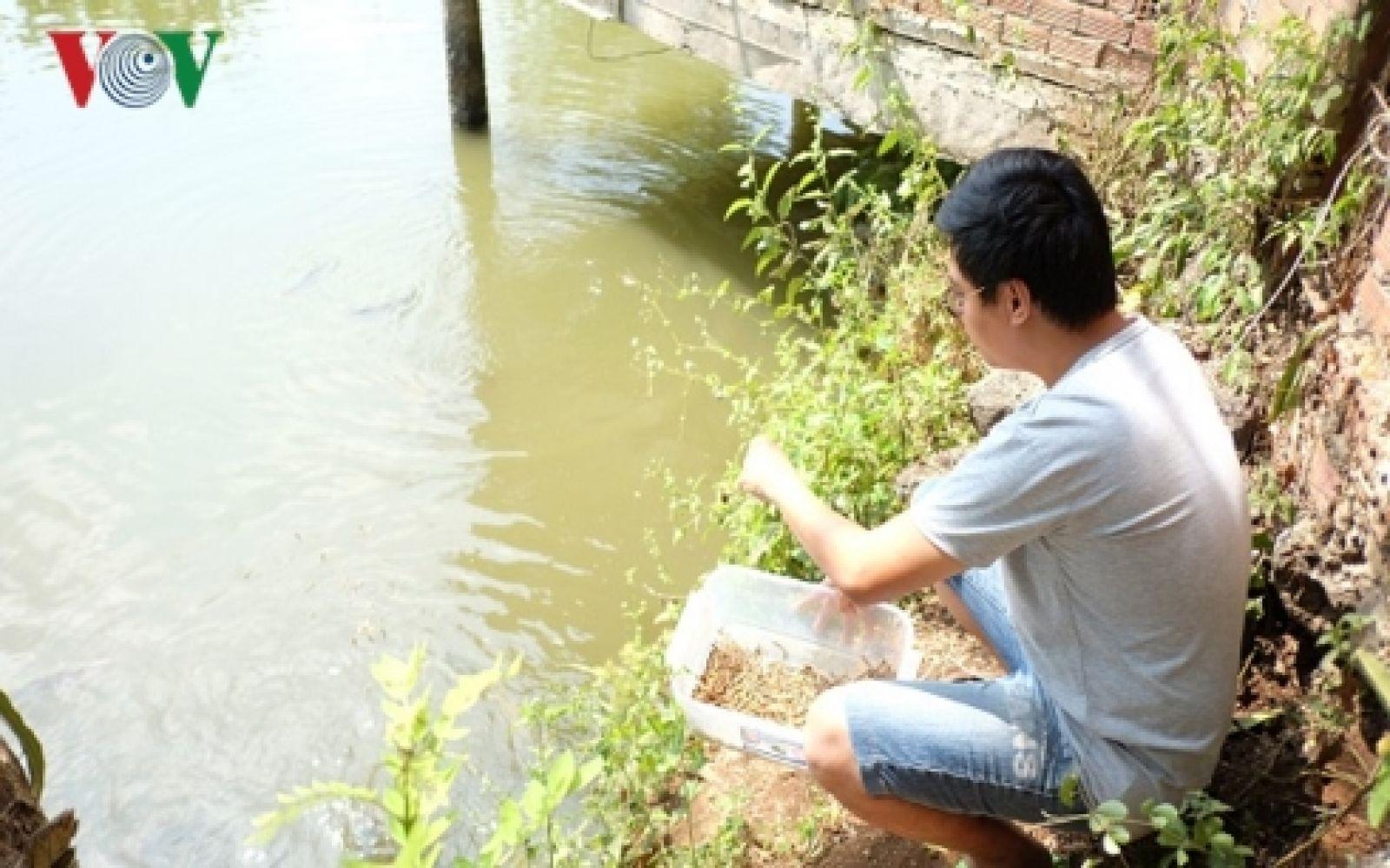 Trần Thanh Nghị đang ấp ủ kỳ vọng tìm chỗ đứng cho ngành cá cảnh Việt trong thị trường quốc tế