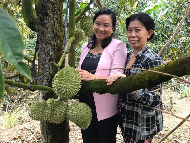 Bà Hương (phải) hướng dẫn Bí thư Huyện ủy Cao Lãnh Huỳnh Thị Hoài Thu tham quan vườn sầu riêng của gia đình /// Ảnh: Trần Ngọc