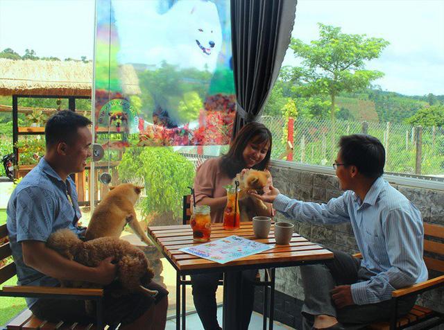 Cà phê thú cưng: Quen mà lạ trên xứ Bazan - Ảnh 1.