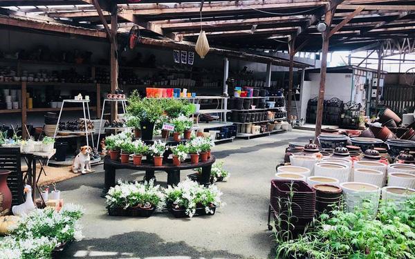 Mở tiệm gốm Bát Tràng chỉ 12m2 giữa ruộng 'đấu' với chục cửa hàng địa phương, đây là cách ông chủ Việt khiến người Nhật khó tính trở thành khách trung thành từ 22 năm trước