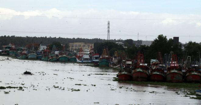 Rất nhiều tàu vẫn neo đậu ở khu vực sông Cái Bé, bởi ra khơi đánh bắt là cầm chắc lỗ. /// Anh Phương