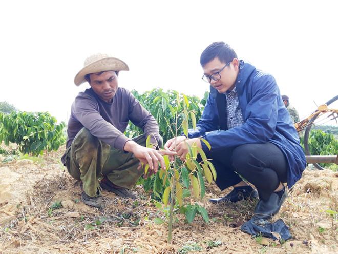 Anh Thi (trái) trao đổi về cách chăm sóc cây sầu riêng /// Đức Nhật