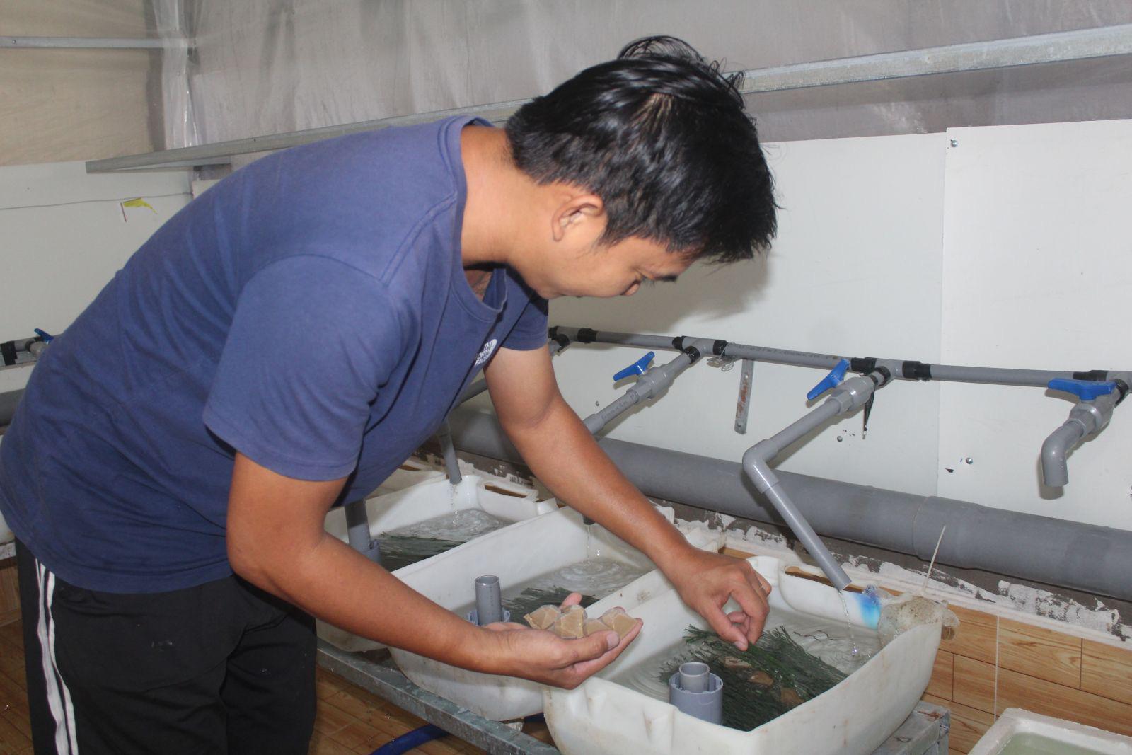 Long An: Nuôi lươn giống công nghệ cao, mỗi tháng bán ra 100 ngàn con lươn mà không đủ bán - Ảnh 1.